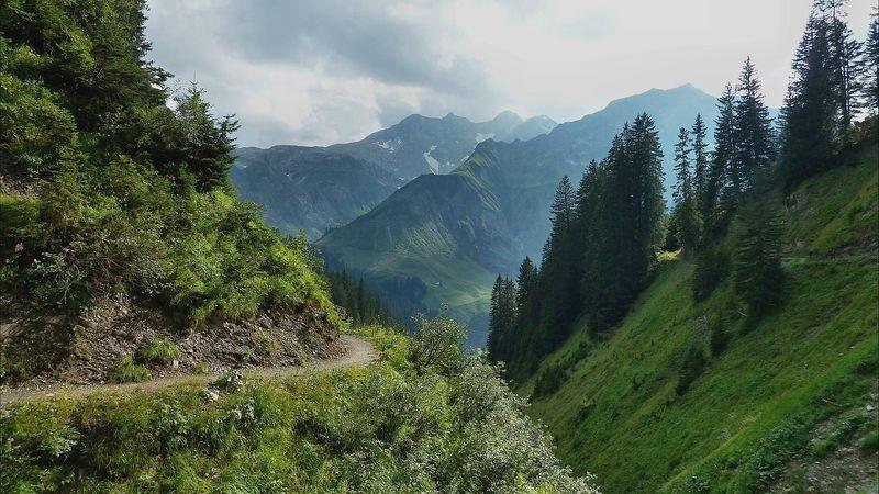 Der Wanderweg quert steile Runsen und Tobel - Braunarlspitze und Hochtannberg im Hintergrund