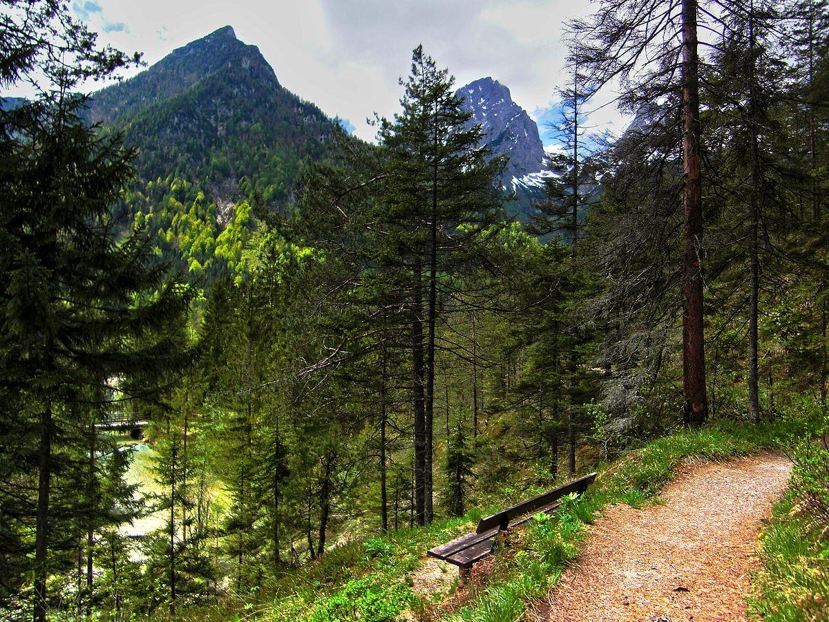 Am Wanderweg Schiederweiher - Polsterstüberl  am Fuß der Polstermauer