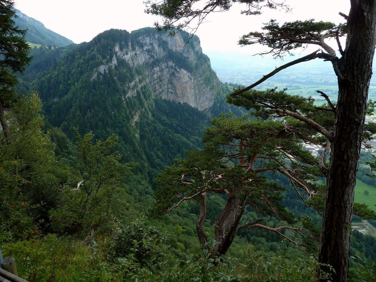 Neben der Karren-Bergstation: Blick auf die Felswand des Breitenbergs und ins Rheintal bei Dornbirn