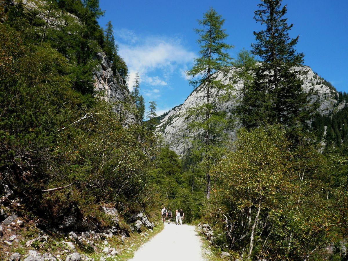 Wanderweg zu Beginn des Hinteren Gosausees