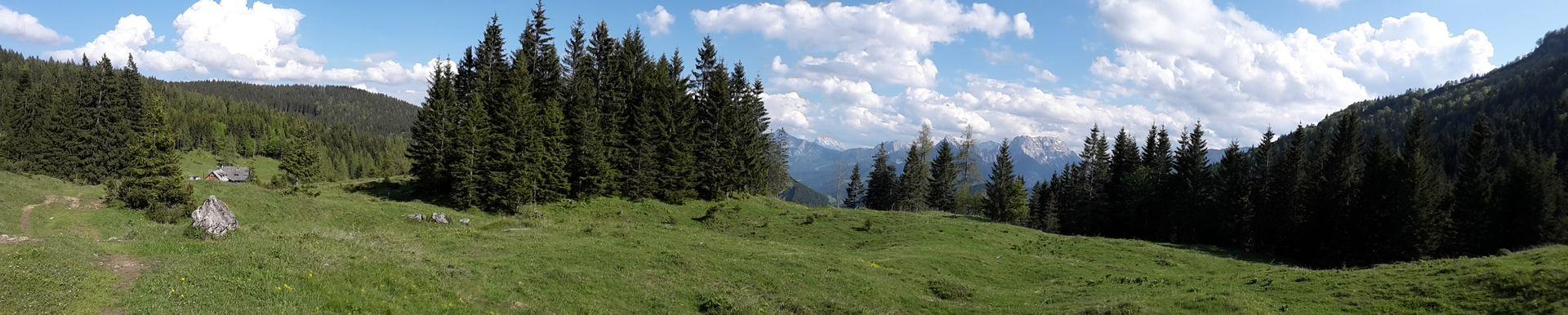 Panorama-Aufnahme vom Weg zwischen Menauer und Schüttbauer Alm bis zur Bodenwies rechts