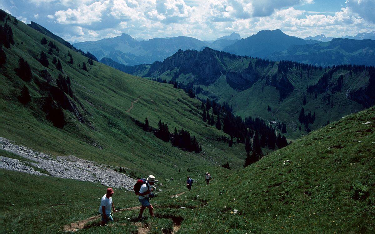 Steileres Wegstück von der Stongerhöhenalpe zum Hasenstrick hinauf