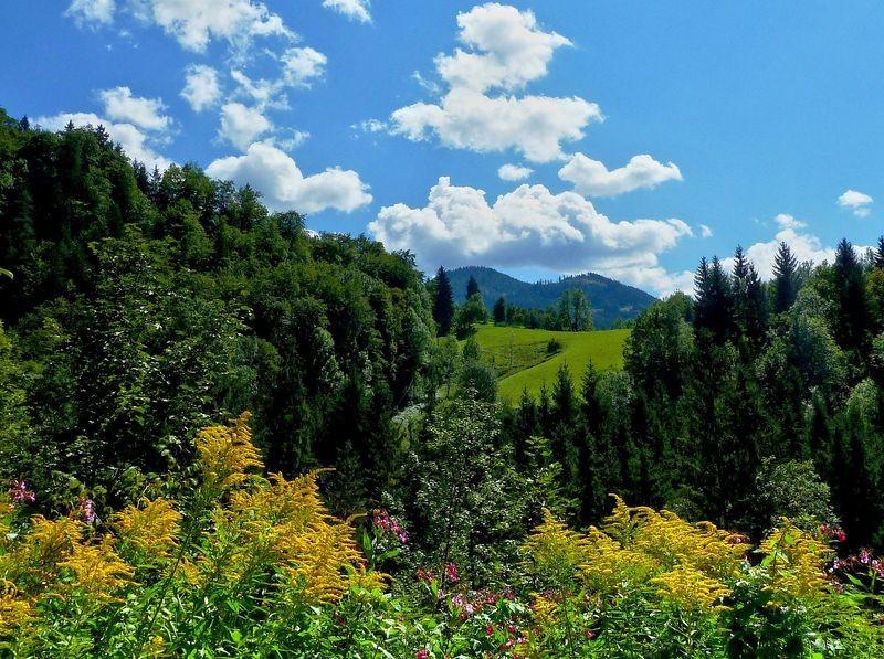 Blauer Himmel und Schönwetterwölkchen vom GeoPfad Gams