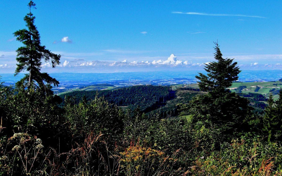Alpenvorland und Höhenzüge des Böhmerwald vom Plattenberg