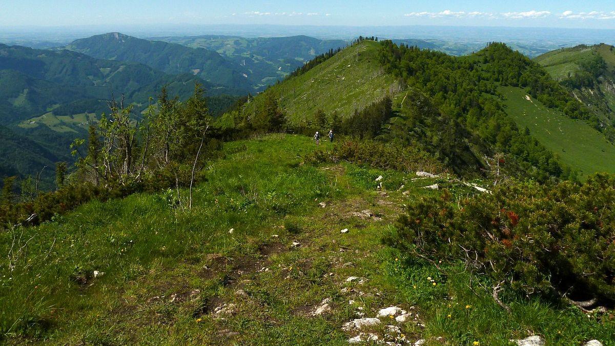 Brunnbacheck vom Anstiegsweg auf den Almkogel