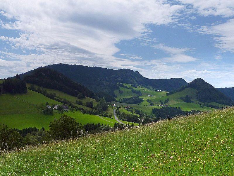 Lindaumauer vom Anstieg durch eine Wiese zum Freithofberg