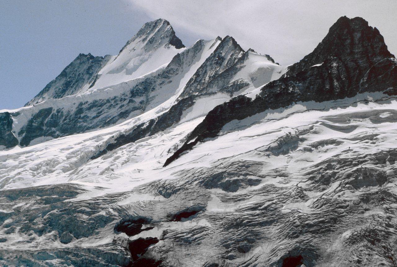 Schreckhörner und Oberer Grindelwaldgletscher von der Glecksteinhütte