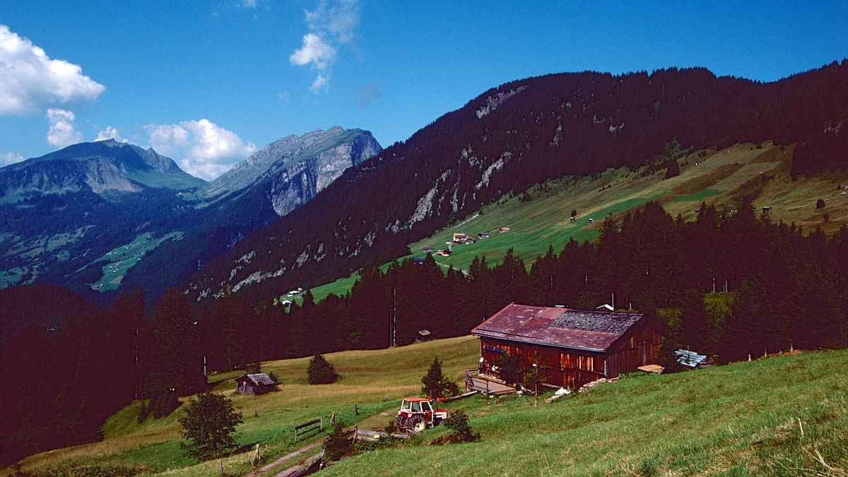 Kanisfluh und Mittagsfluh vom Aufstiegsweg zur Satteleggalpe