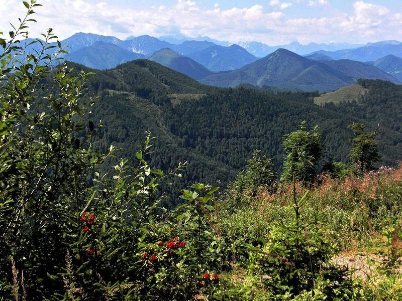 Auf dem Weg zur Hohen Dirn bei einer Wegteilung Blick auf den Nationalpark Kalkalpen