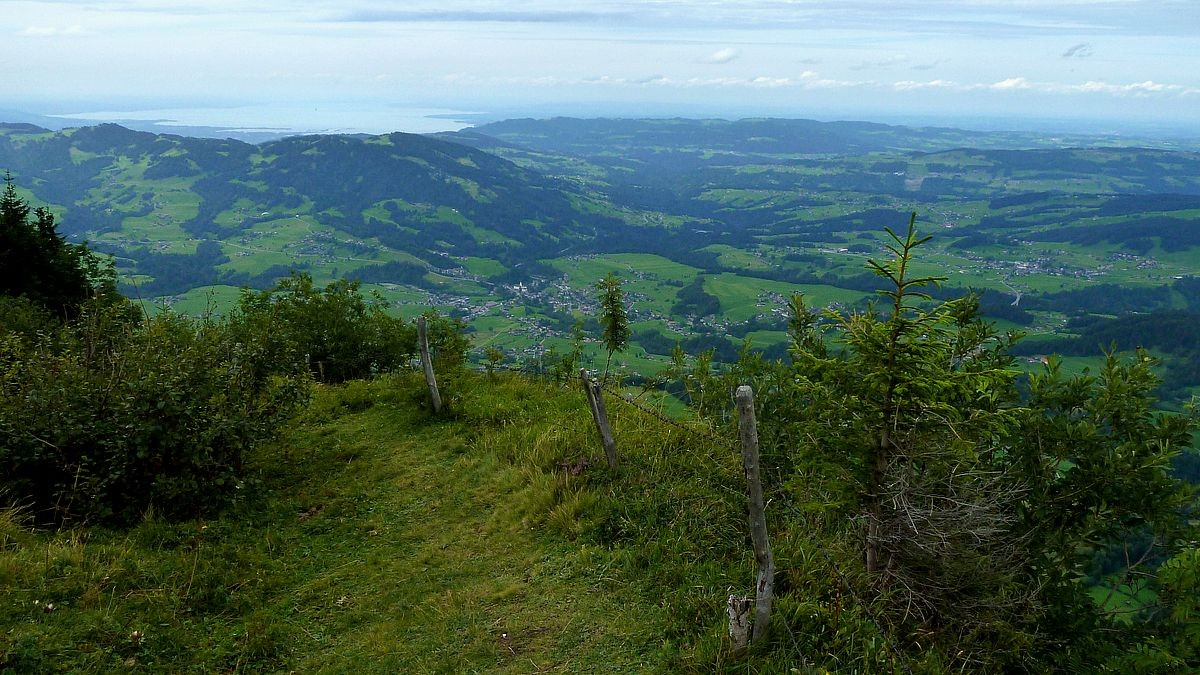Bodensee von der Vorderen Niedere