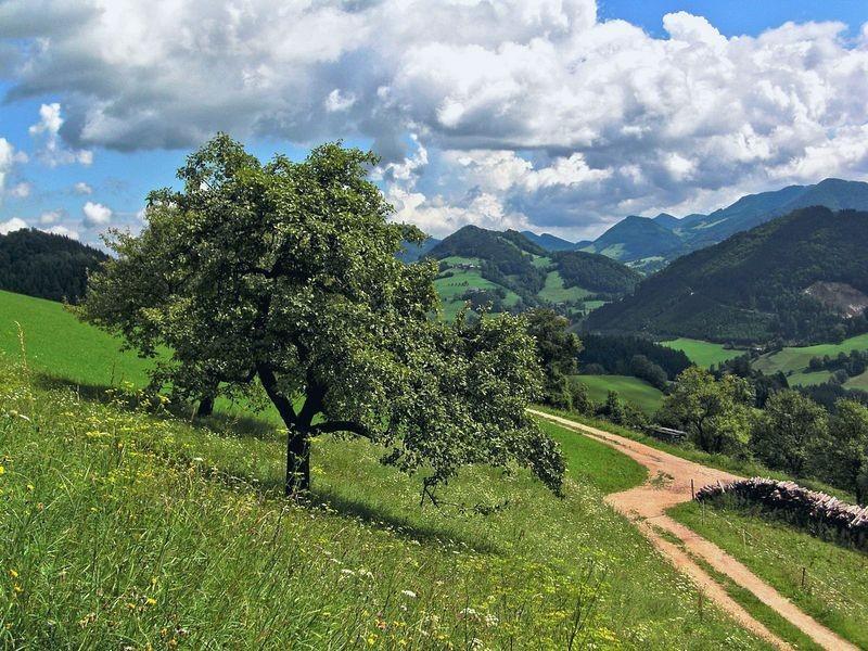 Feldwege am Rabenreithkogel gegen Neustiftgraben und Bergumrahmung von Maria Neustift