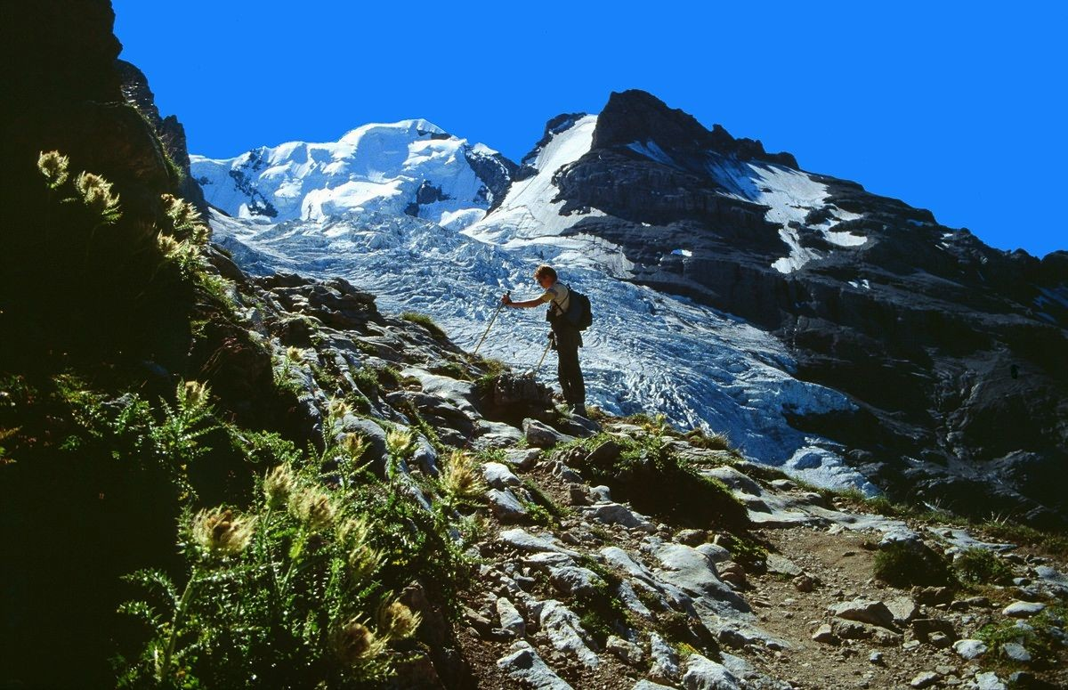 Blümlisalp und Blümlisalpgletscher vom Aufstiegsweg auf die Seitenmoräne des Gletschers