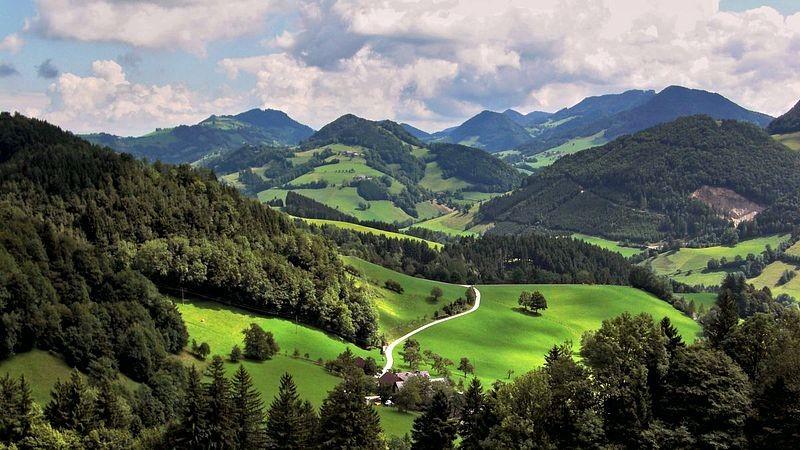 Sicht über den Neustiftgraben auf Freithofberg und Lindaumauer