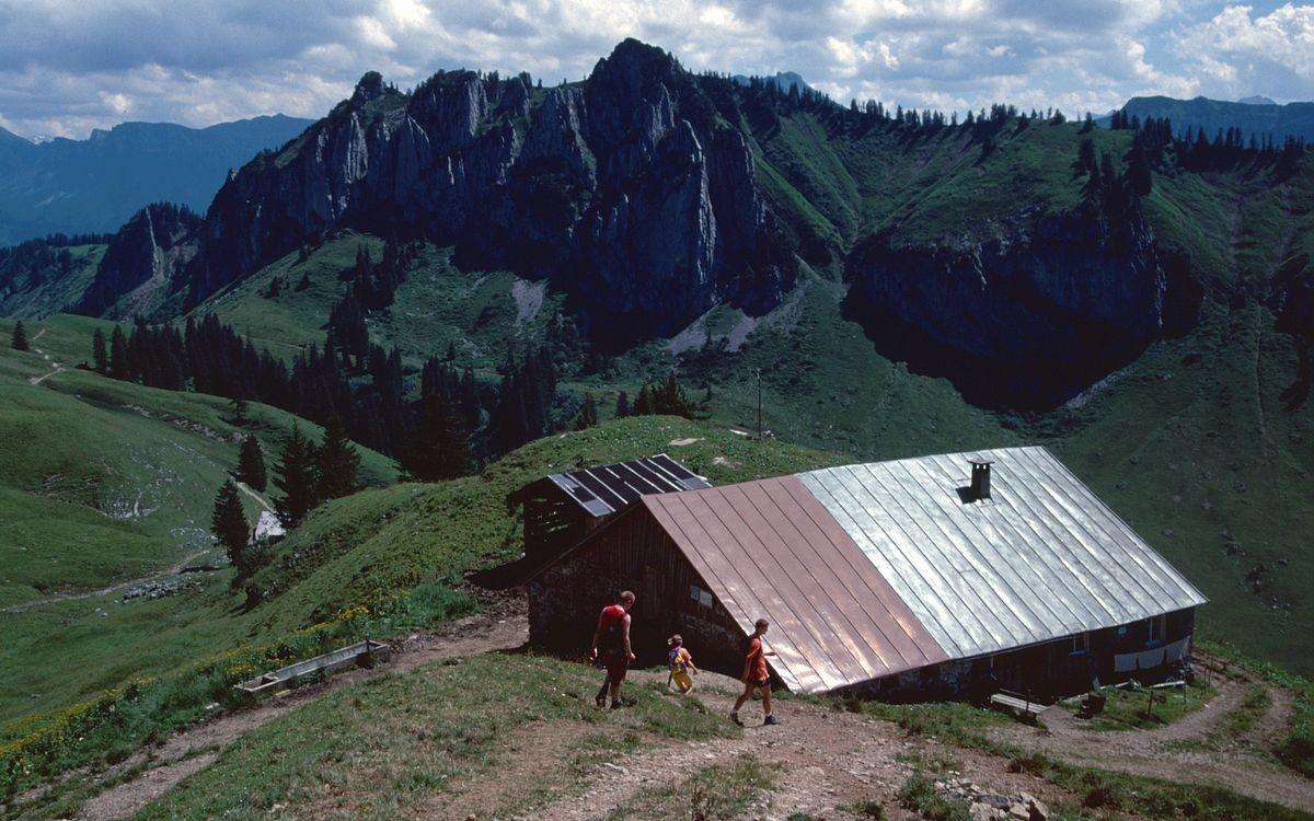 DerLuguntenkopf vom Weg Winterstaude - Stongenalpe