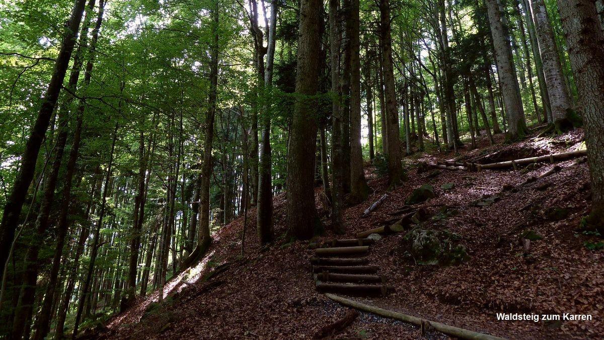 Waldsteig vom See zwischen Alploch und Rappenloch zum Karren