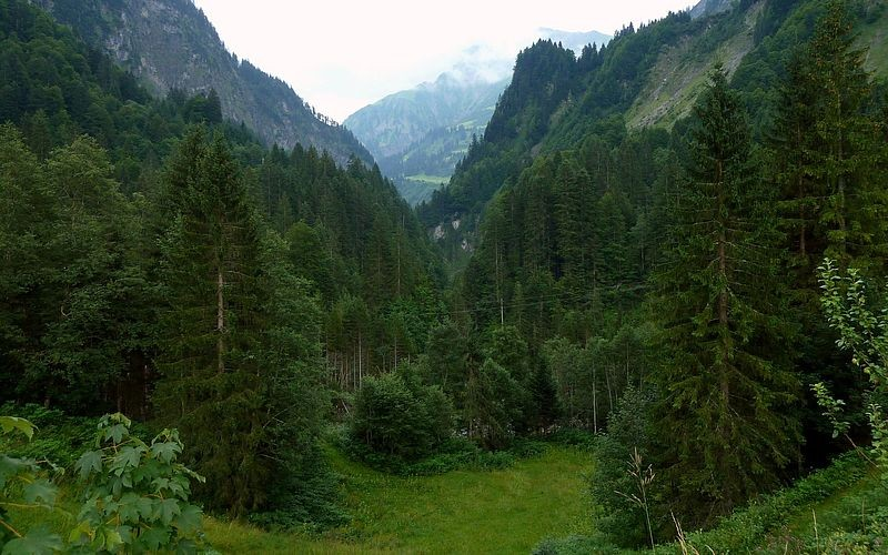 Bei Bad Hopfreben wird das Tal in Richtung Schröcken enger.