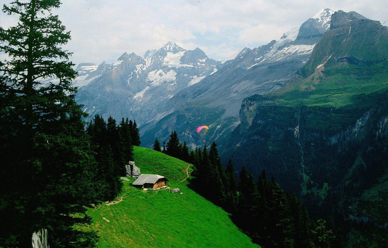 Blümlisalp vom Alpgebiet bei Ryharts