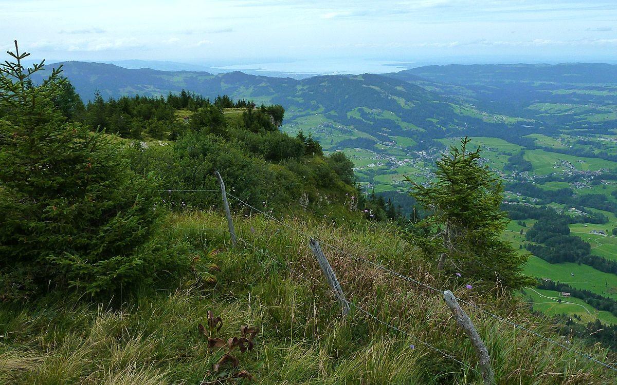 Die Vordere Niedere gegen Bodensee