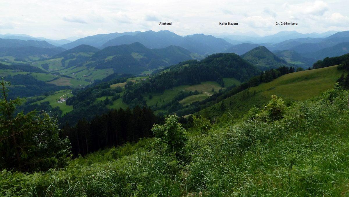 Almkogelgebiet, Haller Mauern und Gr. Größtenberg im Nationalpark Kalkalpen vom Gipfelrücken des Glasenbergs