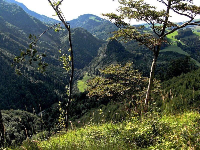 Blick vom Rabenreithkogel auf die Wolkenmauer in der Holleiten