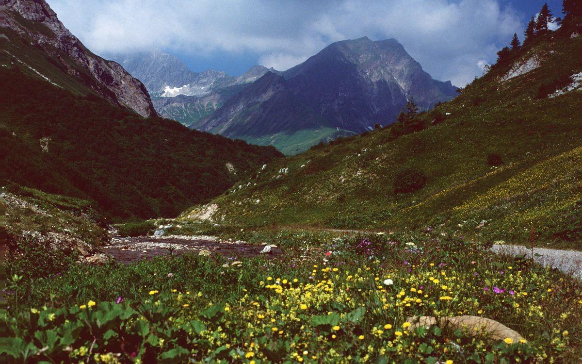 Entlag der jungen Bregenzerache, die in den Hängen der Mohnenfluh entspringt, führt der Weg nach Schröcken hinab.