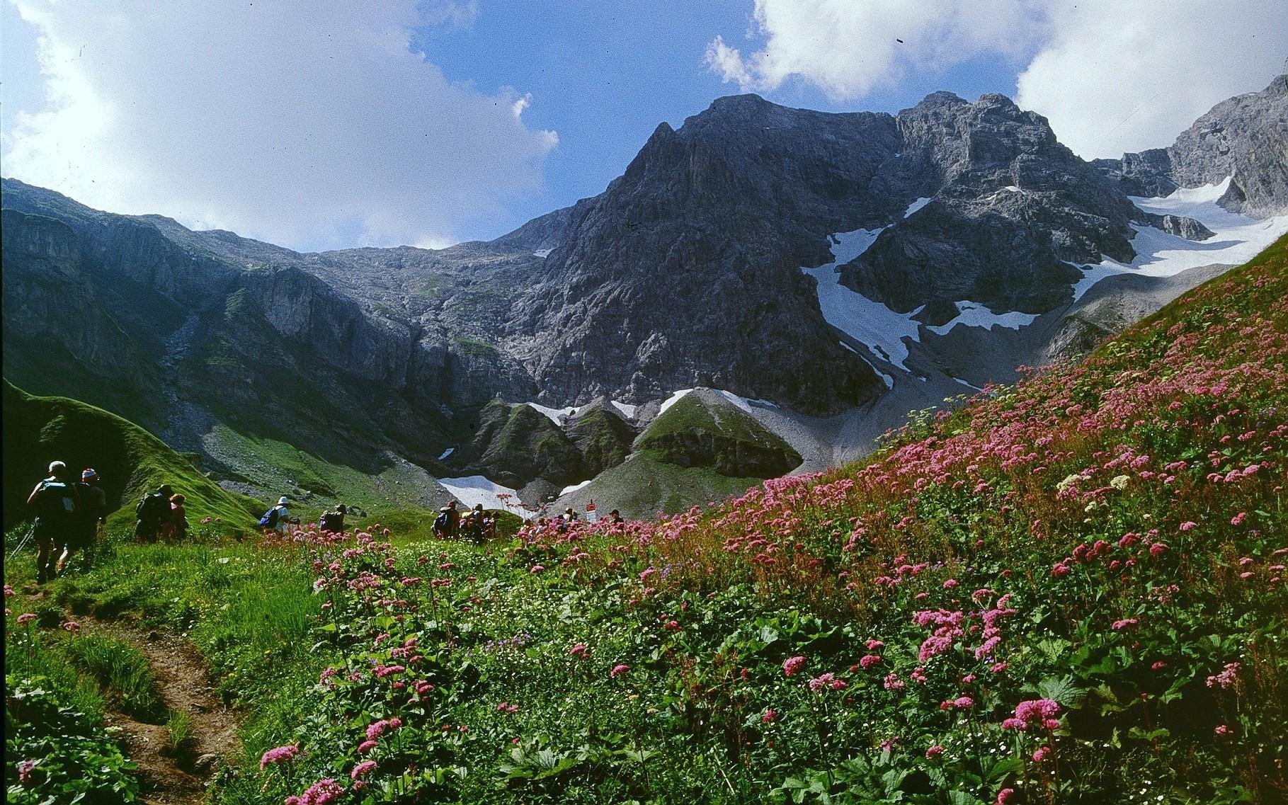 Im Gebiet der Hochgletscheralp - Braunarlspitze mit eingelagertem Gletscher