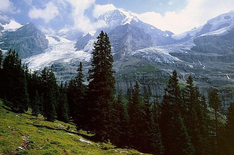 Bei der Mettlenalp. Eigergletscher, Mönch und Jungfraujoch