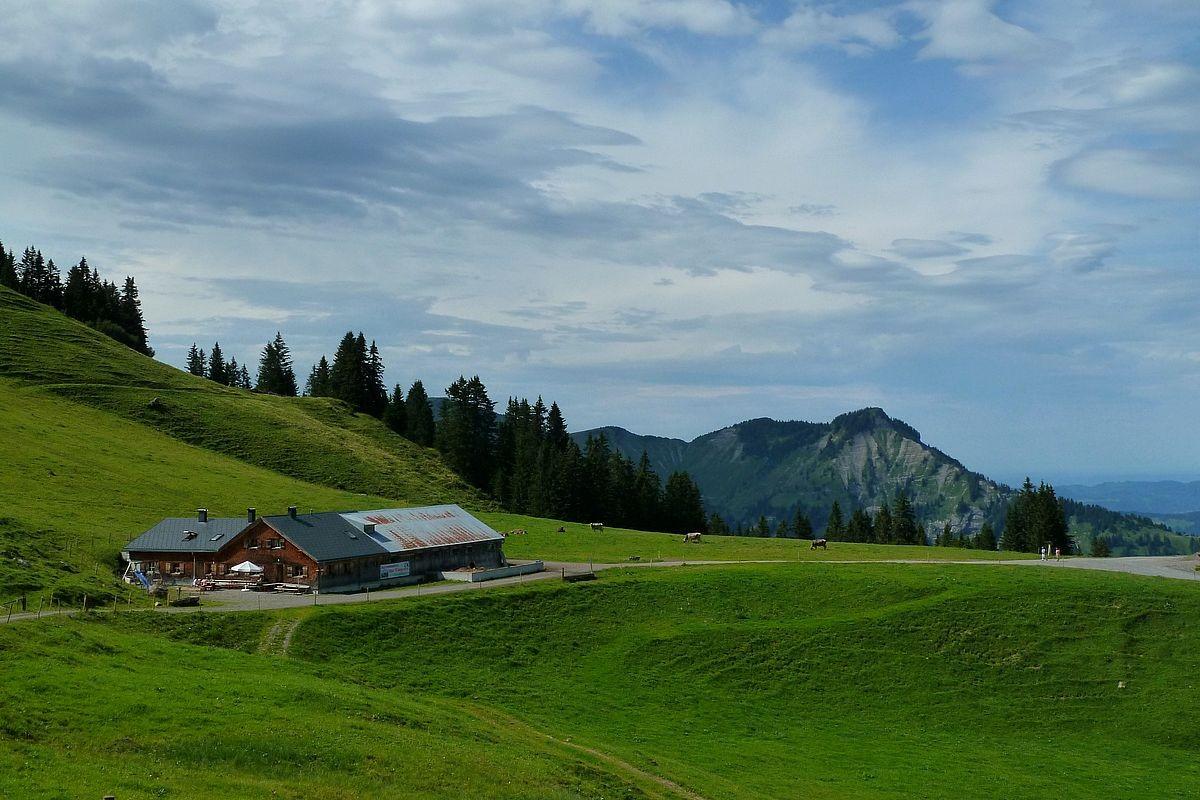 Die Wildguntenalpe und die Einsattelung, über die der Güterweg nach Mellau hinab führt. Hinten die Hangspitze.