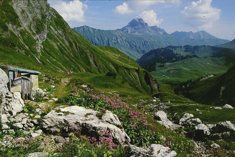 Auf der Hochgletscheralp. Blick auf Höferspitze, Gr. Widderstein und Hochtnnberggebiet