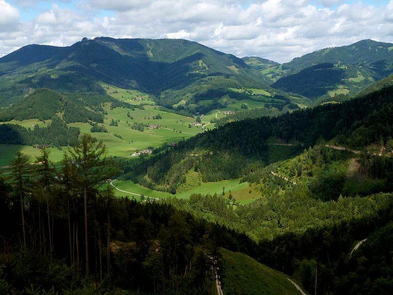 Lindaumauer vom Heiligensteinerweg