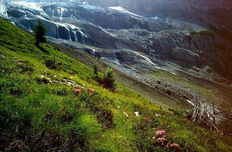 Foto von 1992: Der Abbruch des Balmhorngletscher  von der rechten Seitenmoräne