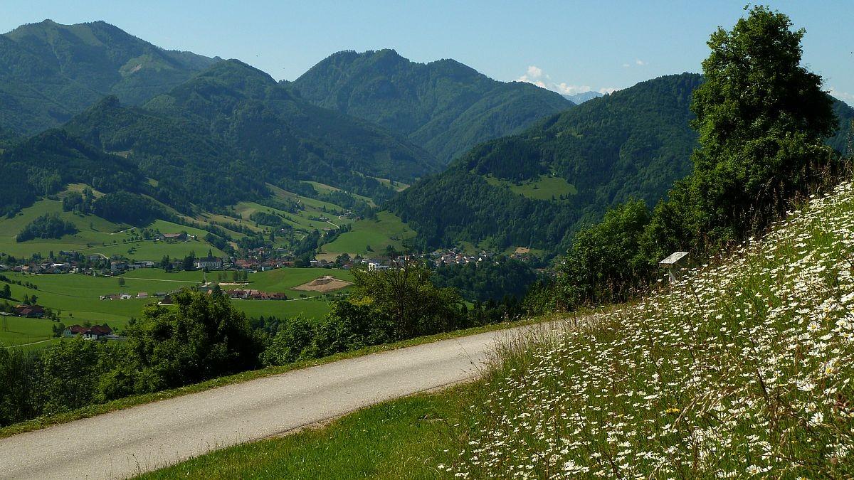 Brunnbacheck/Almkogel und Gamsstein vom Sträßchen auf Rabenreith