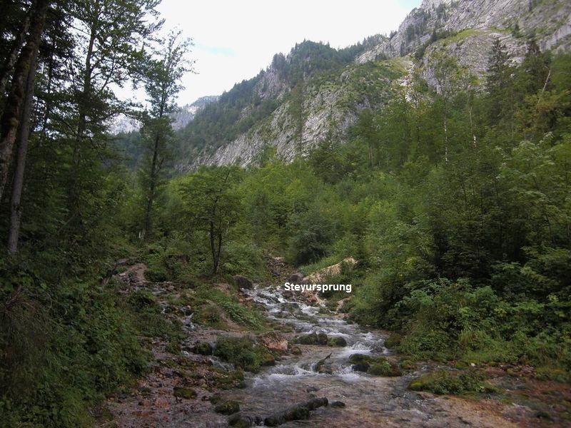 Aus dem Blockwerk und Schutt entspringt die Steyr, die bereit nach 100 m ein möchtiger Bach ist.