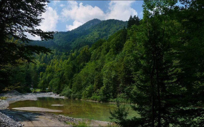 Der Staufensee
