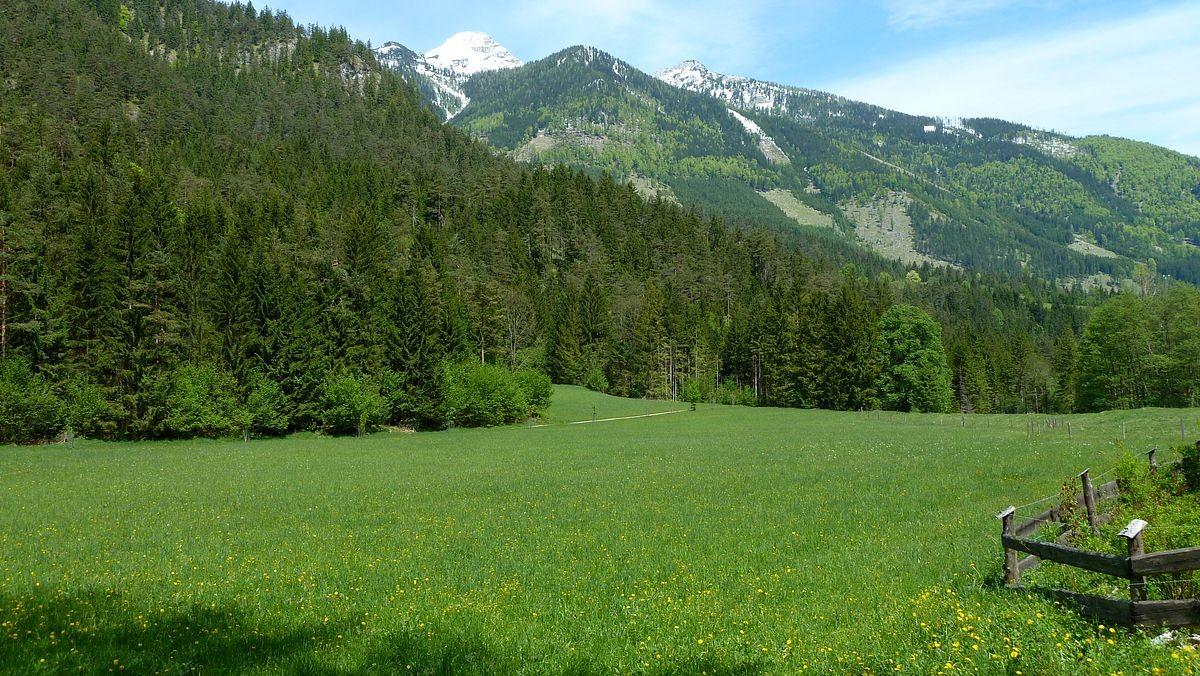 Landschaft bei Hinterstoder vom Wanderweg zum Schiederweiher