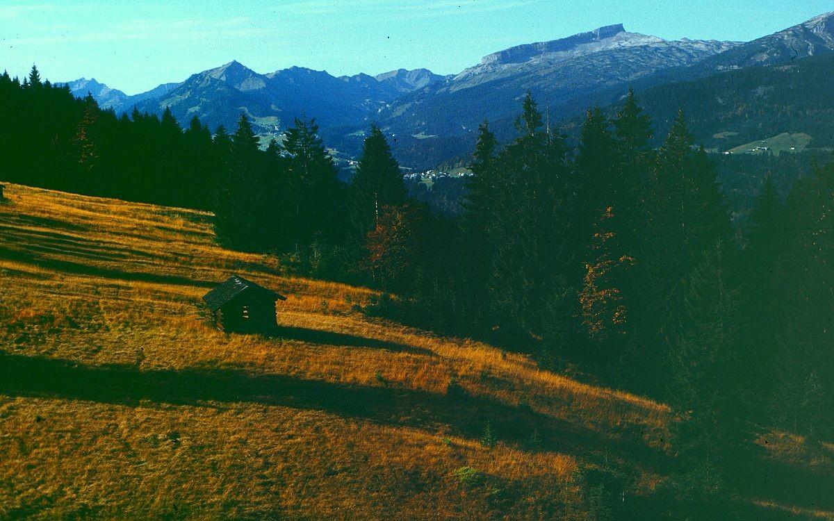 Kleinwalsertal mit Walmendingerhorngebiet und Ifen