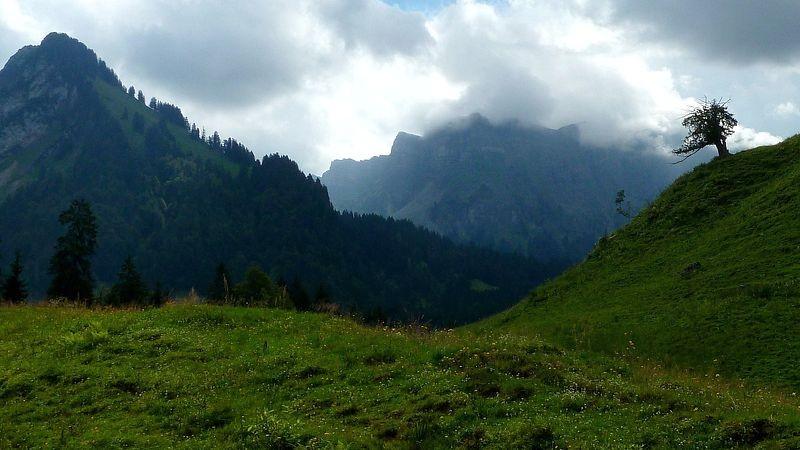 Der Wanderweg führt rechts in das Tal der Subersach mit der Fellifluh im Talhintergrund.