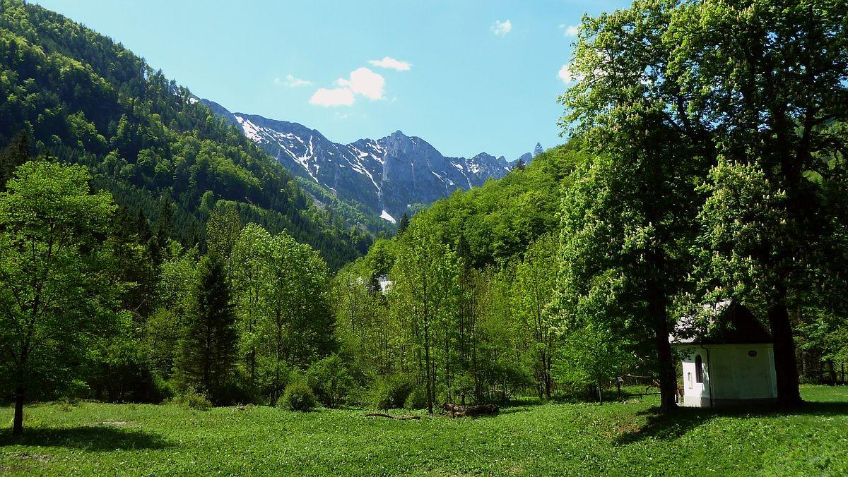 Die Berge bei der Blumenauer Alm vom Weg Bodinggraben -  Blumenauer Alm