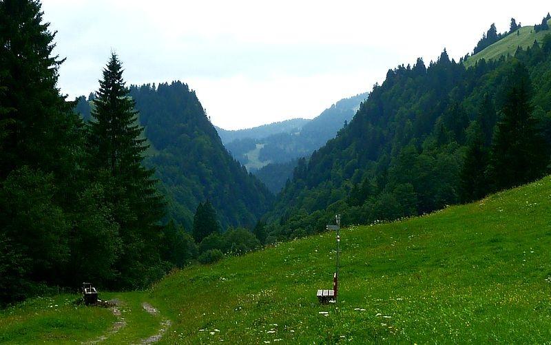 Rückblick vom F. M. Felderweg in nördlicher Richtung