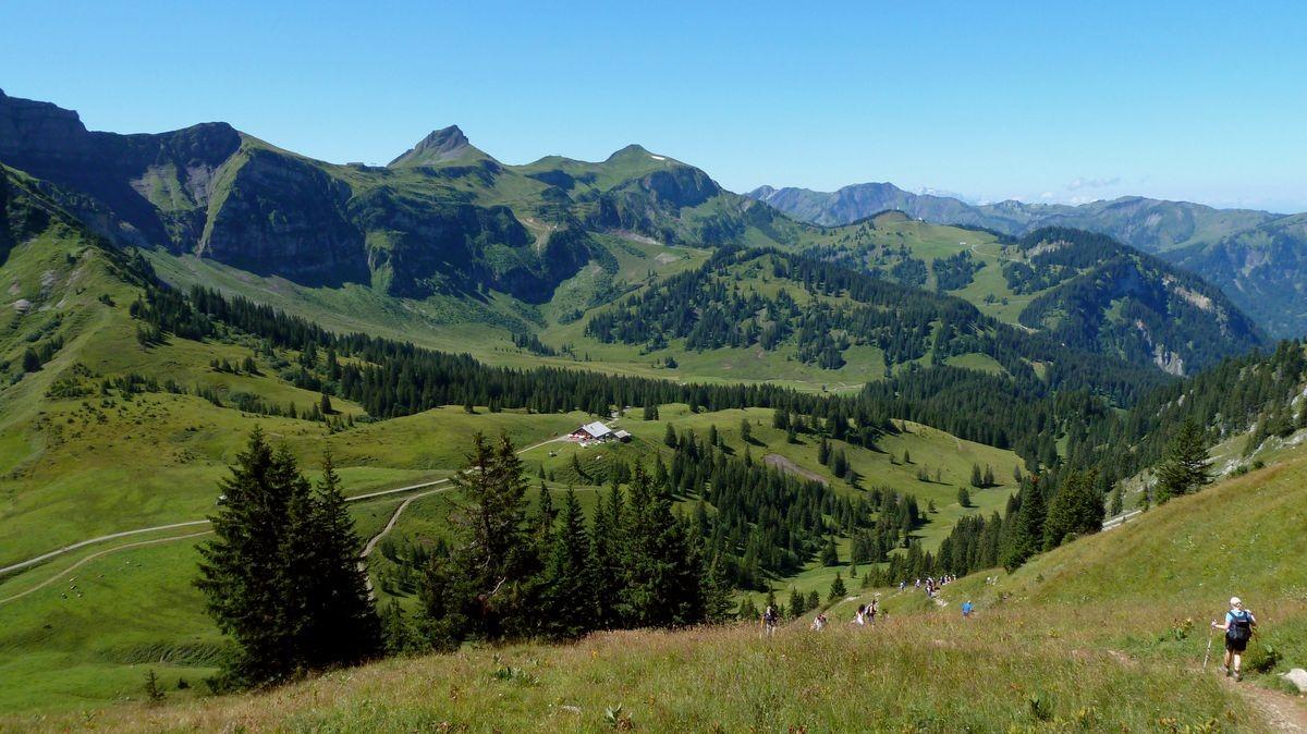 Das Gebiet der Wurzachalpe vom Steig auf die Kanisfluh. Hinten Damülser Kamm mit Damülser Mittagspitze, hohem Freschen.