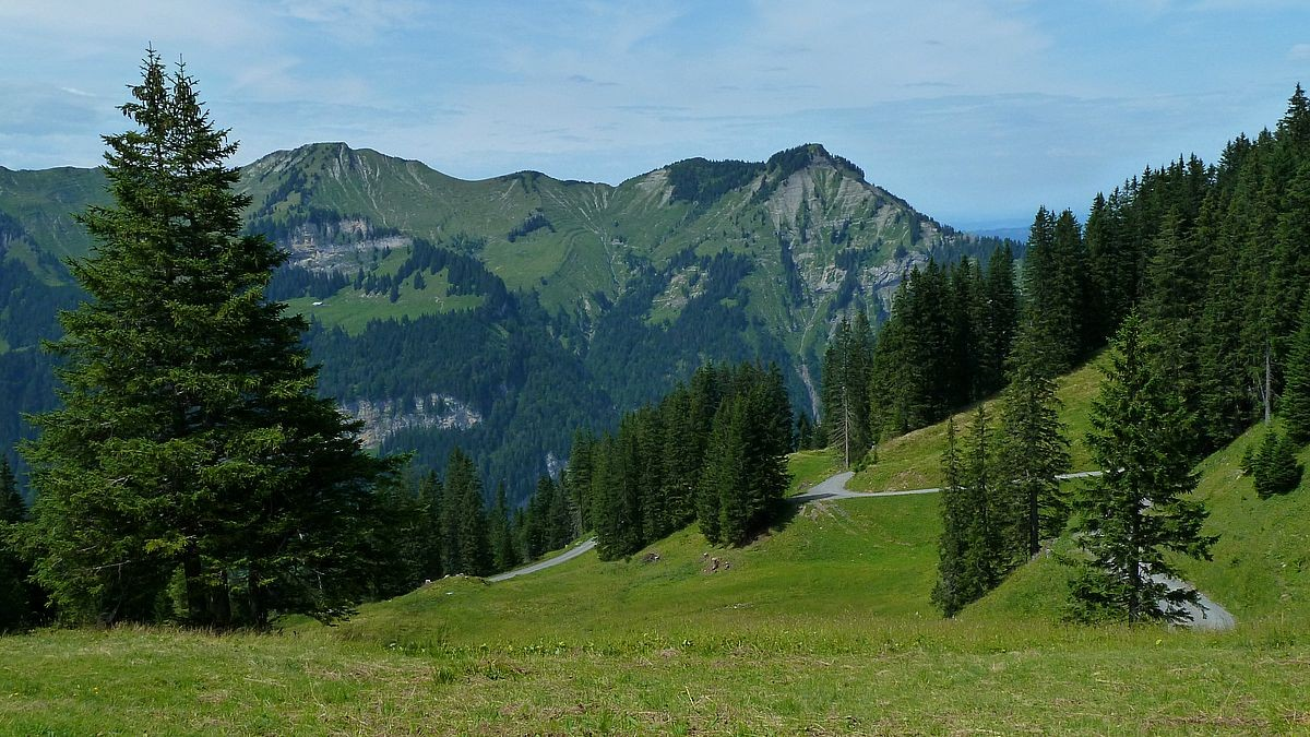 Der nach Mellau hinab führende Güterweg, der häufig von Mountainbikern befahren wird.