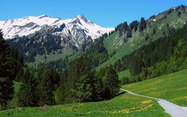 Im Obertal bei Hinterstein