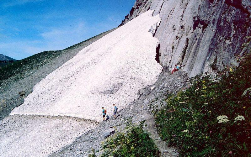 Gefährlicher Rastplatz. Auch im Sommer können vom Gletscher(-abbruch) am Wetterhorn Eislawinen bis ins Tal abgehen. Soweit ich mich erinnern kann, wies sogar eine Warntafel darauf hin, dass man diese Stelle zügig queren sollte.