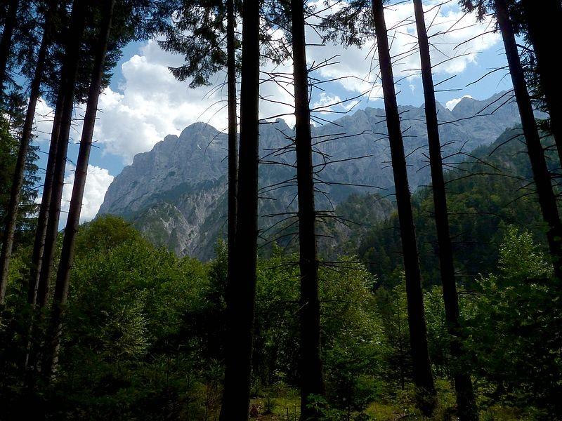 Der Weg führt überwiegend durch Wald mit gelegentlichen Ausblicken auf die Gipfel