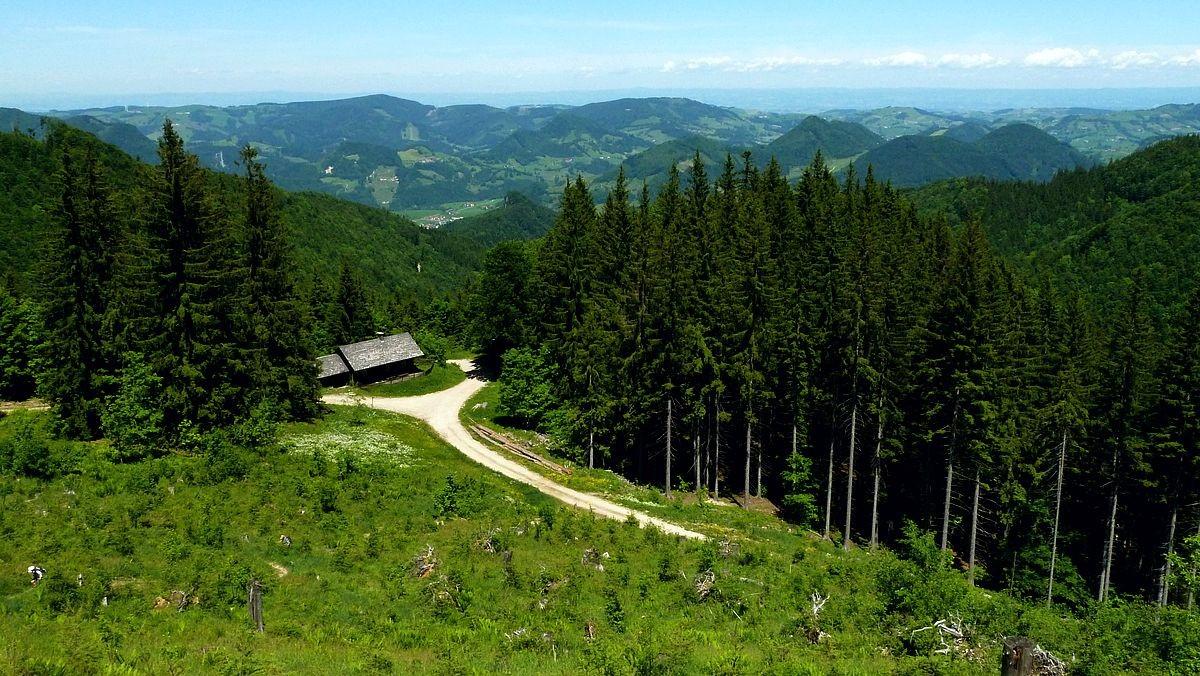 Jagdhütte und Forstweg zur Ennser Hütte