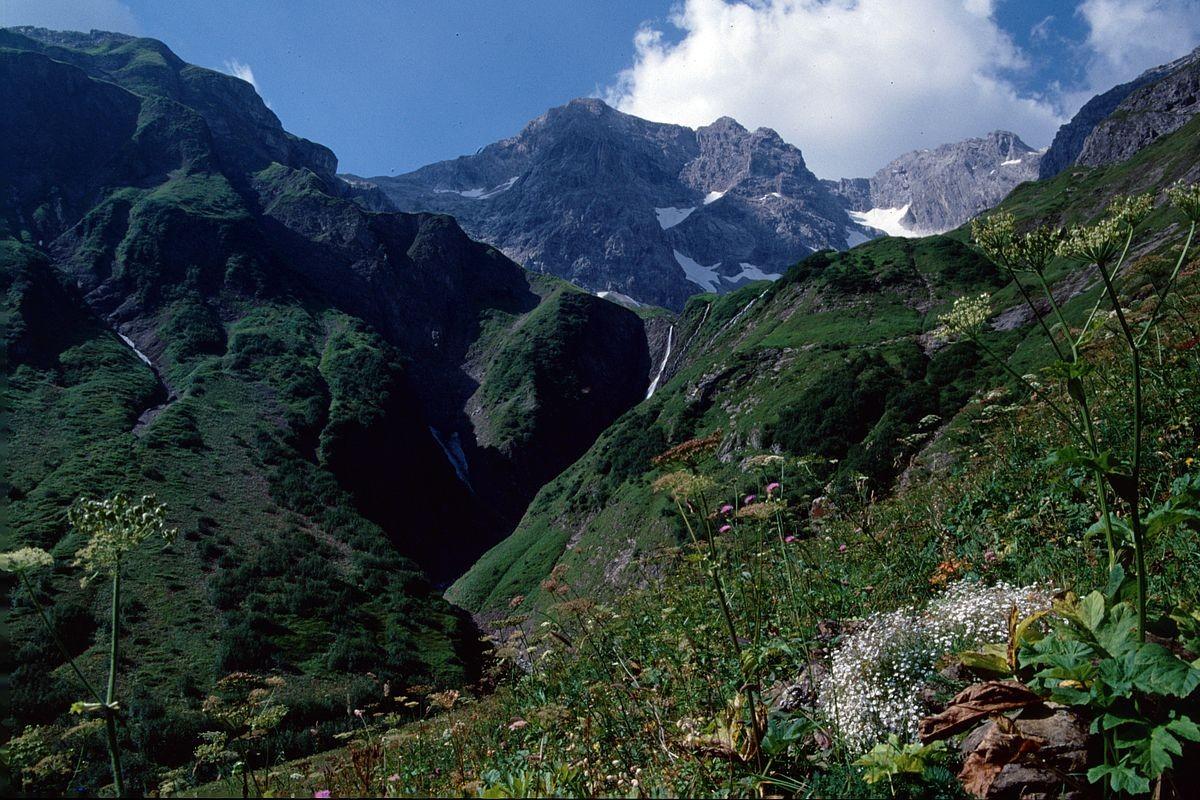 Anstieg durch das Gebiet Hintere Fellealpe - Hinten Braunarlspitze
