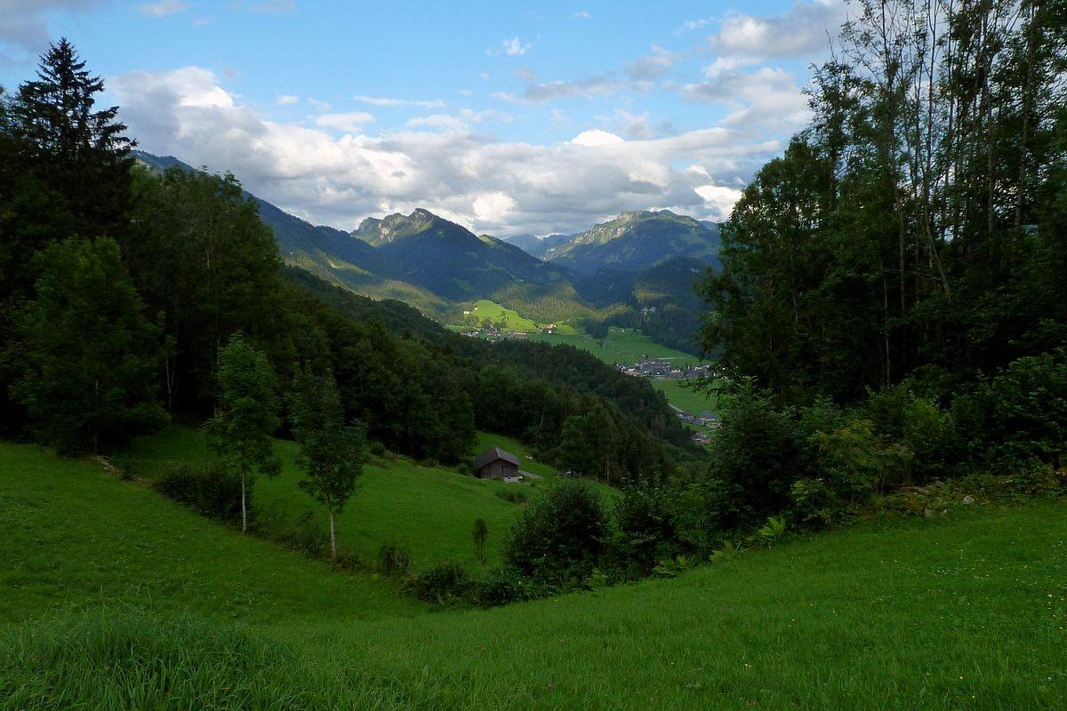 Alpwiesen oberhalb des Heuguts