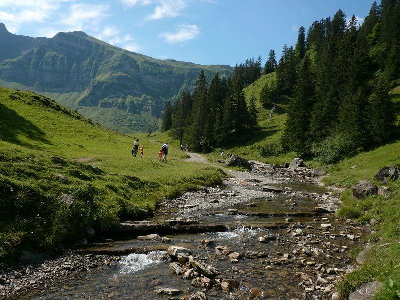 Der Alpbach auf dem Weg zur Kanisalpe vom Rastplatz