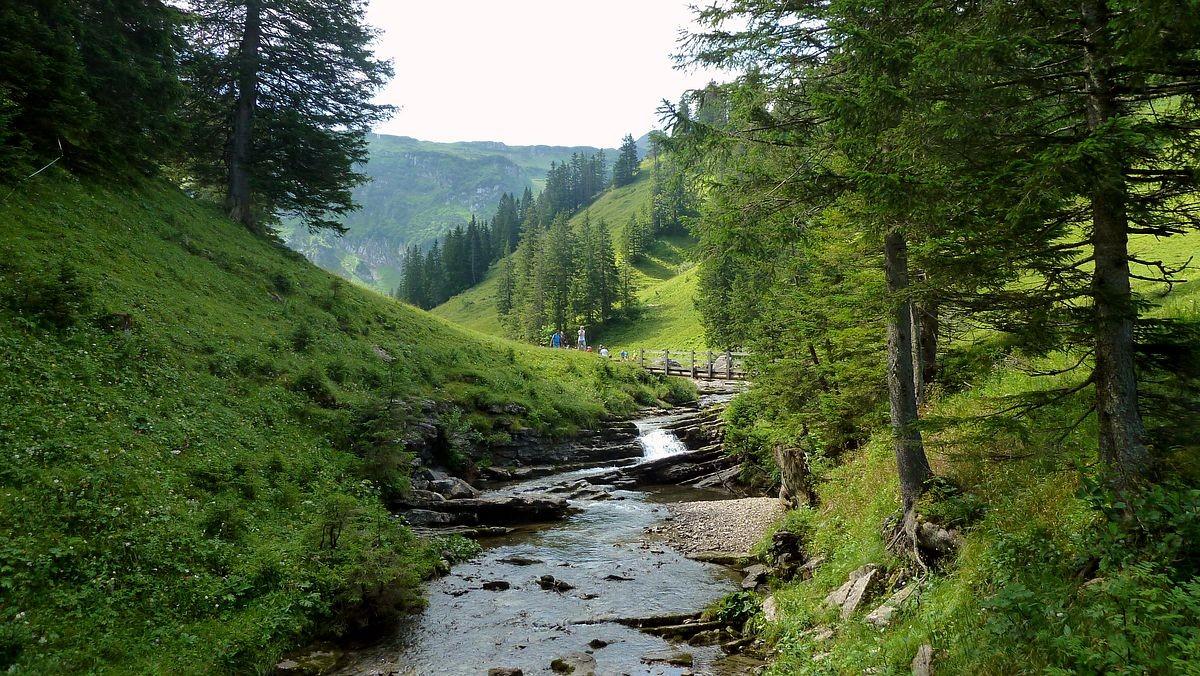 Der Alpbach auf dem Gebiet der Kanisalpe