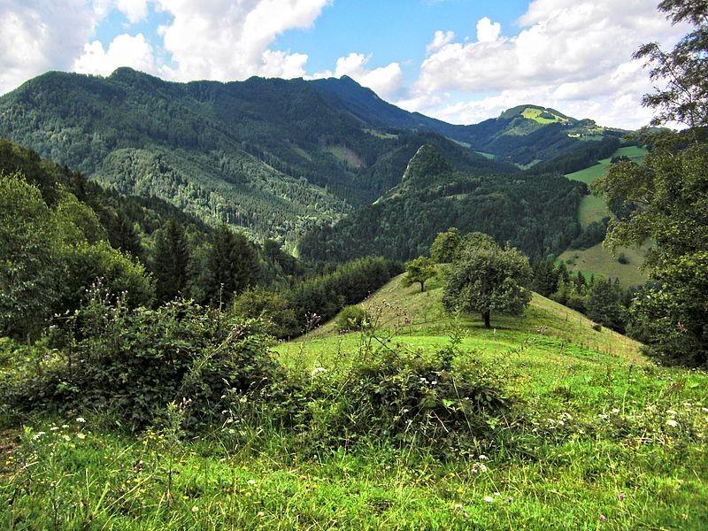 Am Rundweg um den Rabenreithkogel: Blick in den Pechgraben zur Wolkenmauer und zum Schieferstein